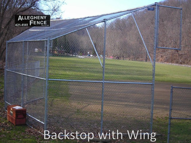 Backstop with Wing