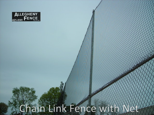 Fence with Netting