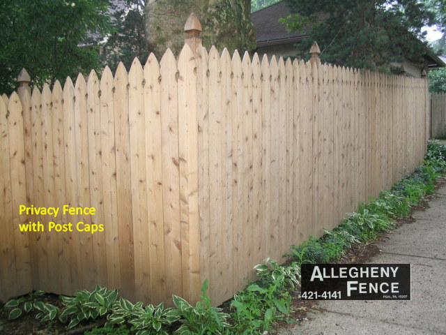 Picket Fence with Post Caps